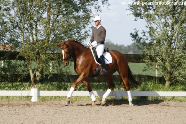 sold-to-the-netherlands-chirlon-x-royal-dance